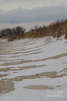 Snow on the Beach by Tannis  Baldwin