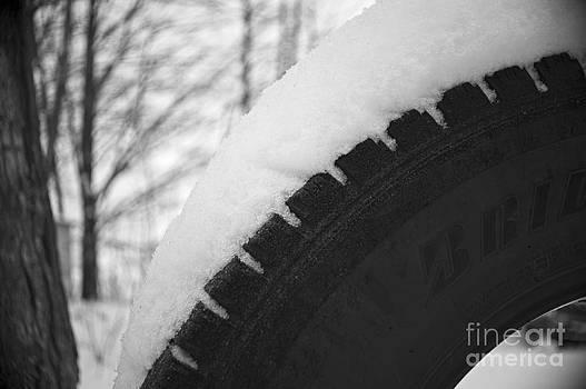 Elaine Mikkelstrup - Snow on the Tire Swing