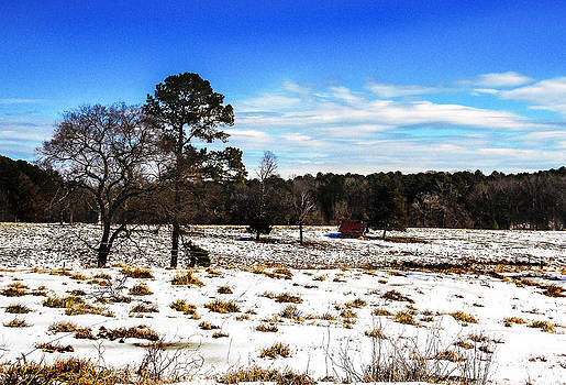 Snow Pastures by LB Christopher