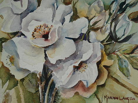 Snow Rose by Marion Langton