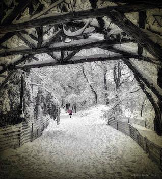 Victoria Porter - Snow Scene in Central Park