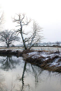 Fizzy Image - snow scene with river running through
