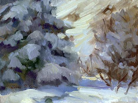 Diane McClary - Snow shadows 2