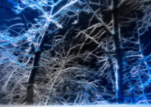 Glenn Feron - Snow Spikes