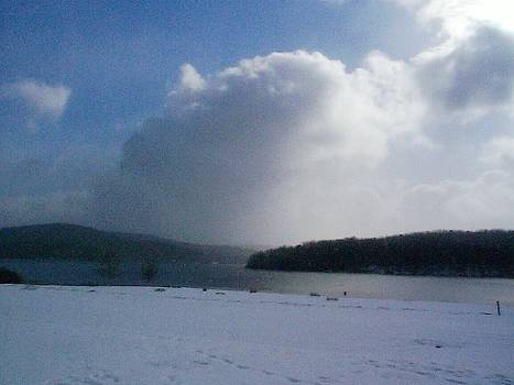 Snow Squall Over Lake Arthur Pennsylvania by Joann Renner