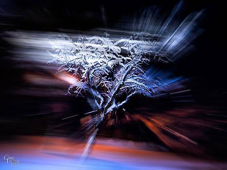 Glenn Feron - Snow Storm