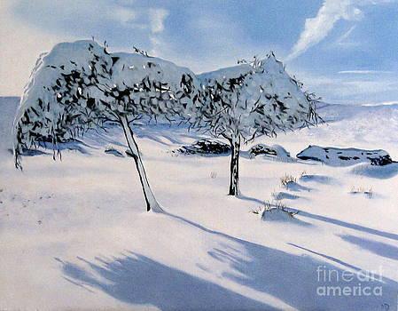 Snow trees in Derbyshire by Martin Davis