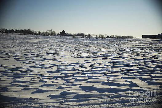 Elaine Mikkelstrup - Snow Waves