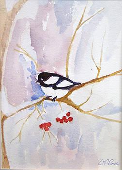 Snowbird by Randy Ross