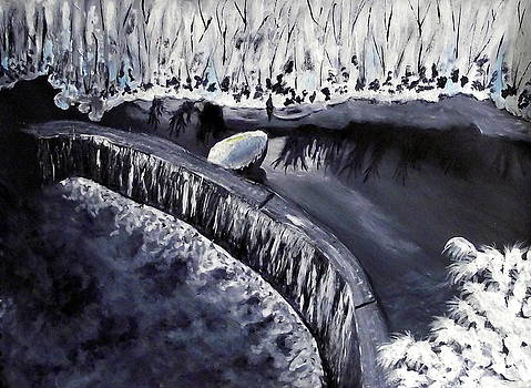 Snowbound Weir by Sandy Wager