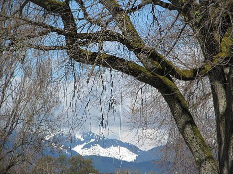 Alfred Ng - snowcap mountain