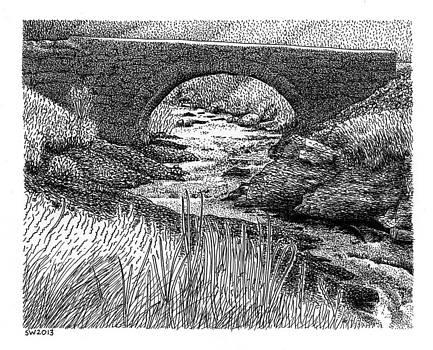 Snowdonia Logging Road by Scott Woyak