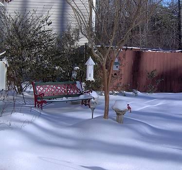 Shesh Tantry - Snowfall in Jamestown II