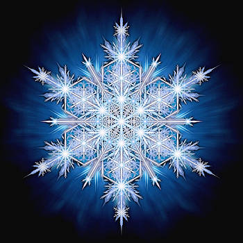 Snowflake - 2013 - A by Richard Barnes