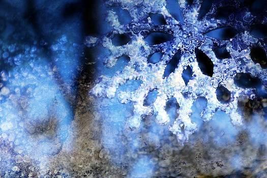 Snowflake In Blue 8 by Dawna Morton