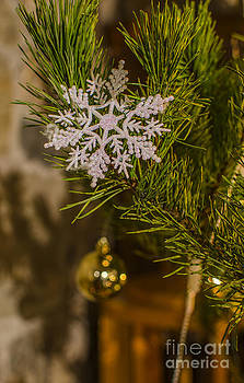 Darren Wilkes - Snowflakes At Christmas