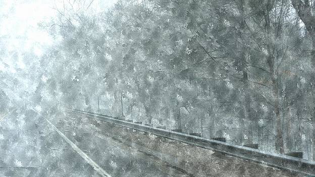 Rosemarie E Seppala - Snowing Coming Down On M-37