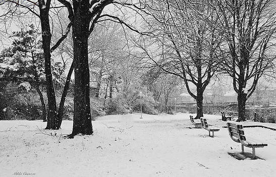 Snowing Out in black and white by Mikki Cucuzzo