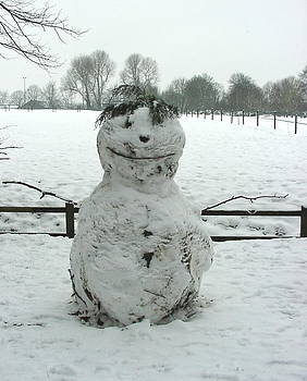 Snowman smile please by Fred Whalley