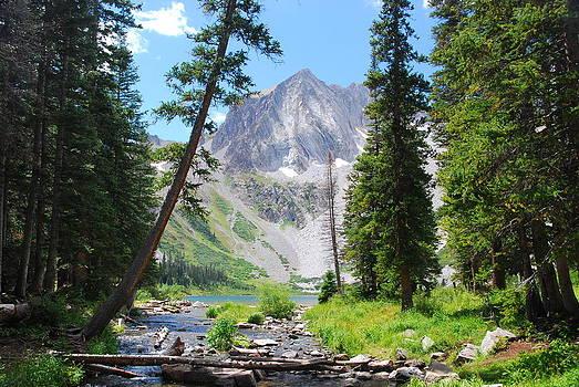Snowmass Peak Landscape by Cascade Colors