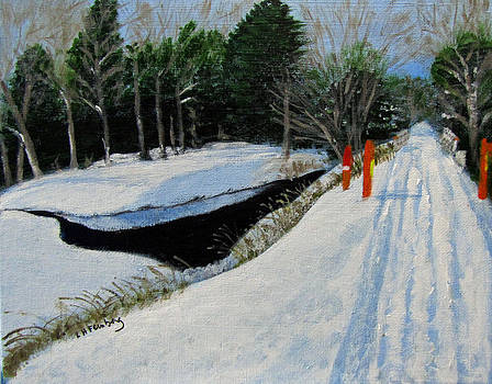 Snowmobile Trail at Clark's Pond by Linda Feinberg