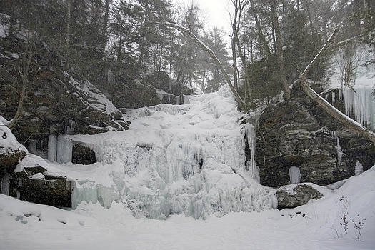 Snowstorm At Ganoga by Gene Walls