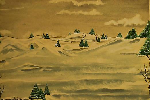 Snowstorm by Joe Bledsoe