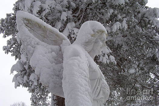 Snowy Angel by Kevin Croitz