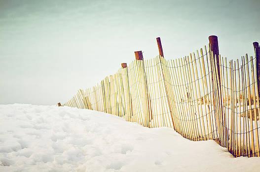 Carolyn Cochrane - Snowy Beach