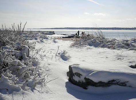 Kate Gallagher - Snowy Beach