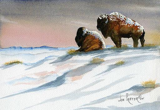Snowy Buffalo Home by Joe Prater