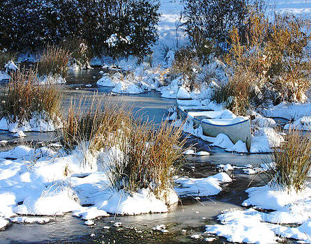 Snowy Canoe by Pam Carter