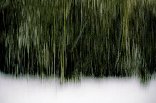 Snowy Day Abstract by Steve Stanger