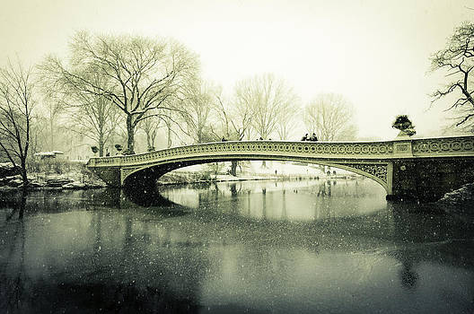 Snowy Day at the Park by Jose Vazquez