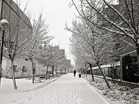 Snowy Day in Madrid by Galexa Ch
