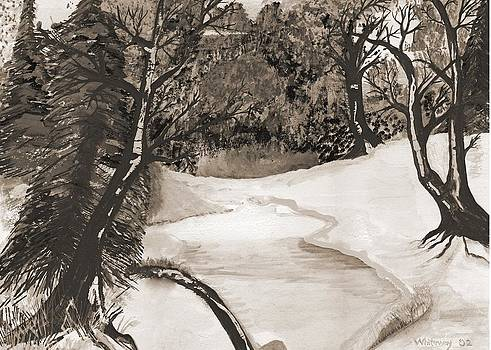 Anne-Elizabeth Whiteway - Snowy Day in Sepia