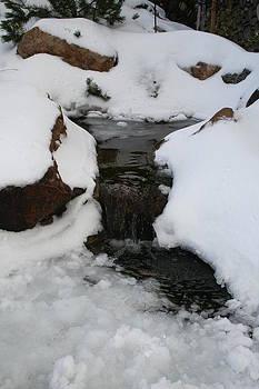 Snowy Falls by Rebecca Christine Cardenas