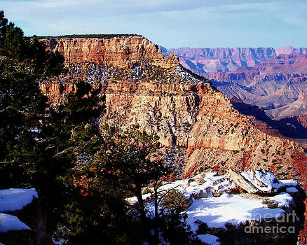 Snowy Grand Canyon Vista by Janice Sakry