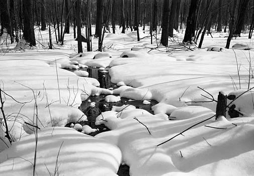 Snowy Heaven by Henri Bersoux
