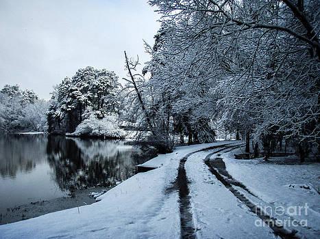 Snowy Lake Path by Michelle Burkhardt