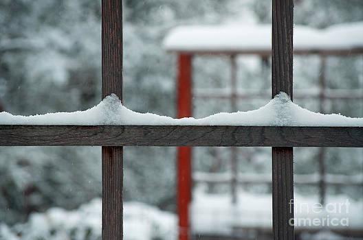 Gwyn Newcombe - Snowy Lines