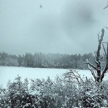 Snowy Nh by Mel Garvin