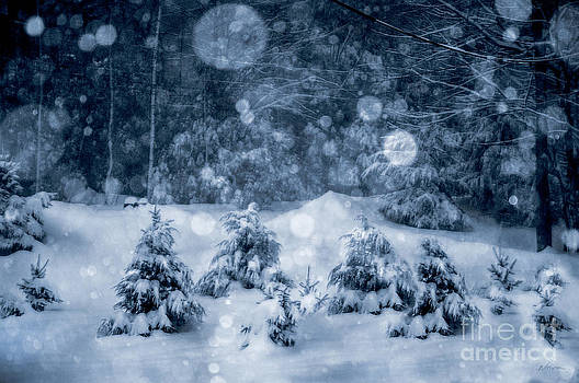 Snowy Night by Deena Athans