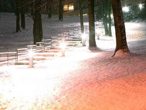 Sandy Tolman - Snowy Night Path 01331