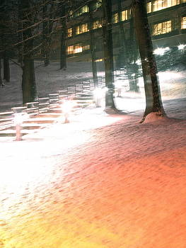 Sandy Tolman - Snowy Night Path 01333