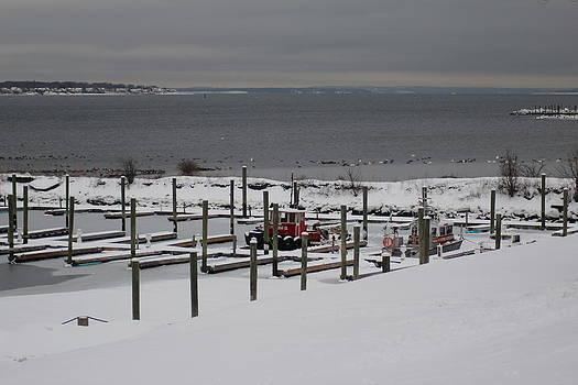 Snowy Ocean by Michelle Lawrence