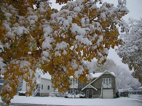 Snowy Orange Leaves by Ken Branch