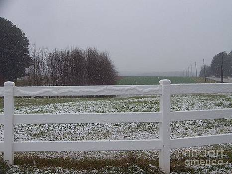 Snowy Pasture by Kevin Croitz