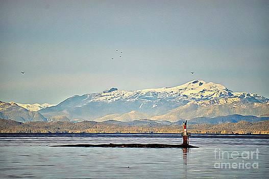 Snowy Peaks by Gail Bridger