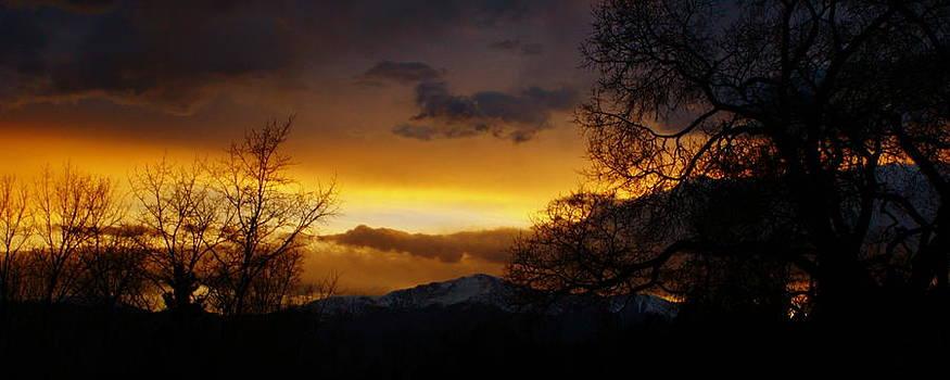 Snowy Pikes Peak by Alexandra  Rampolla